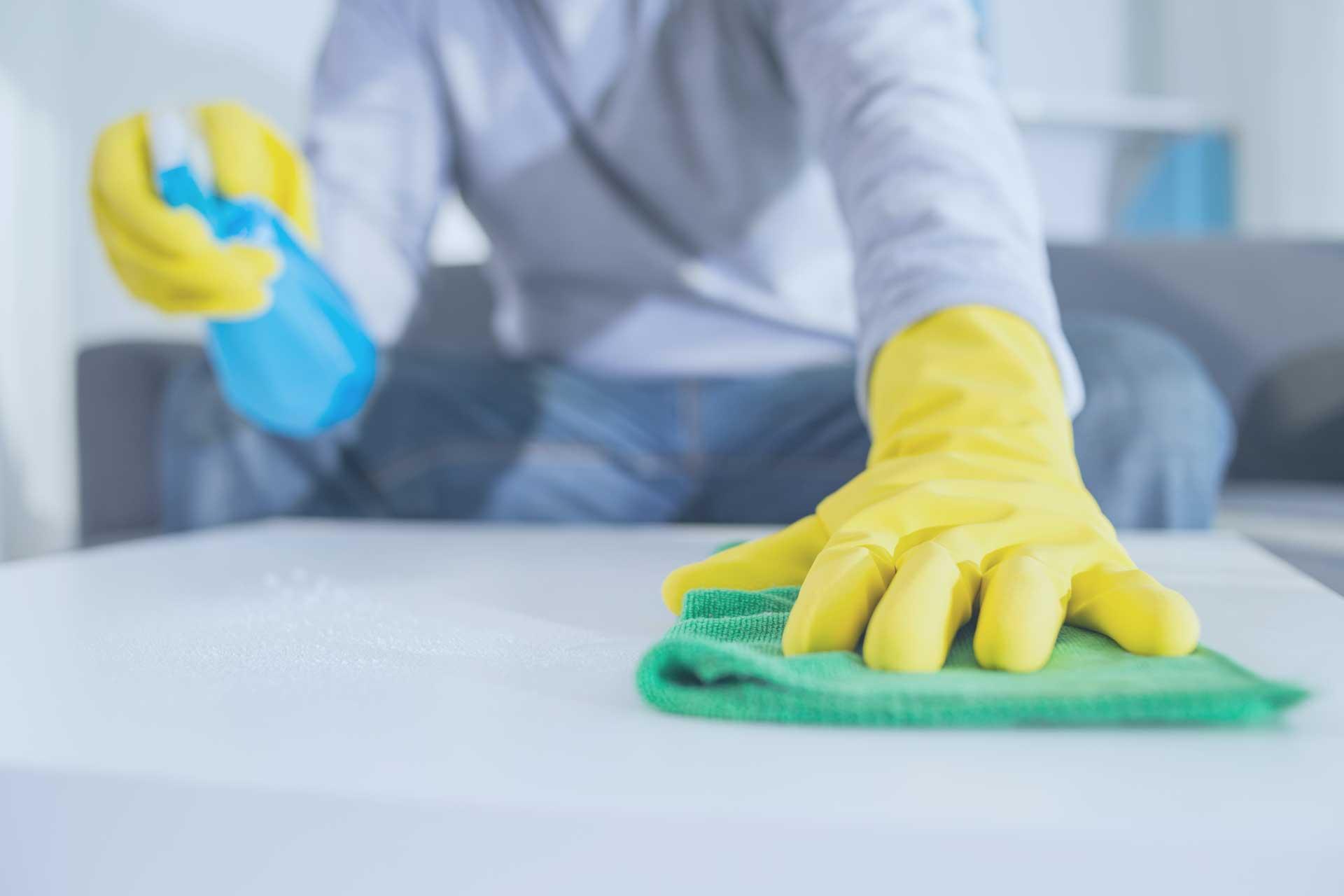 Reinigungsleistungen Privathaushalte